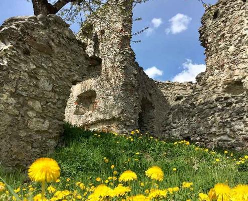 Wandern mit Kindern Allgäu   Burgruine-Hohenfreyberg-bei-Pfronten-im-Ostallgaeu-2