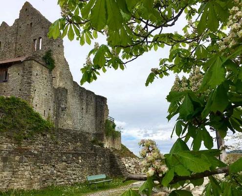Burgruine Sulzberg im Oberallgäu nahe Kempten