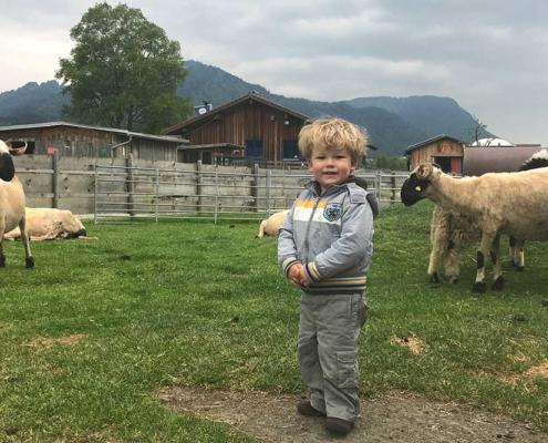 Streichelzoo Burgberg im Allgäu