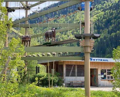 Großer Alpsee Immenstadt Skytrail
