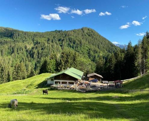 Sehenswürdigkeiten Allgäu Alpe an der Starzlachklamm