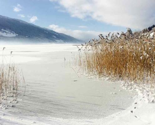 Großer Alpsee bei Bühl in der nähe vom Immenstadt im Oberallgäu im Winter