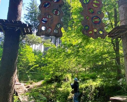 Fliegender Bär im Kletterwald Bärenfalle