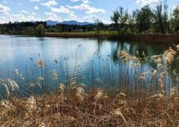Seen Allgäu Niedersonthofener See | Oberallgäu
