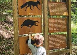 Walderlebnispfad Bannwald bei Ottobeuren im Unterallgäu