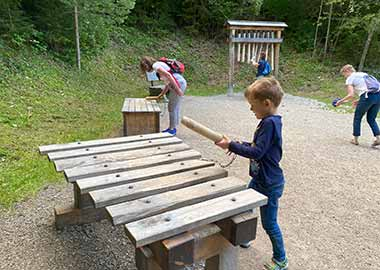 Ausflugsziele Füssen Bergwaldpfad