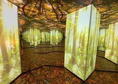 Ausflugsziele Füssen Walderelebniszentrum