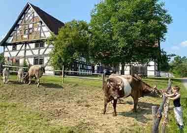 Ausflugsziele Unterallgäu Bauernhofmuseum Illerbeuren