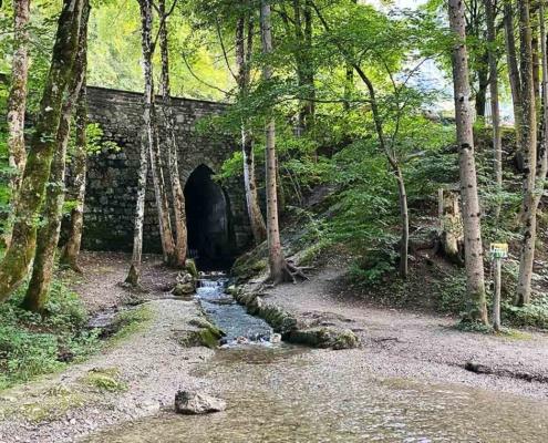 Auwaldpfad Füssen Ziegelwies Wasser