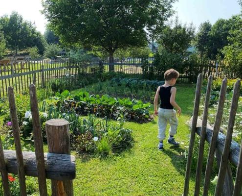 Schwäbisches Bauernhofmuseum Illerbeuren Gemüsegarten