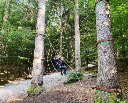 Bergwaldpfad Füssen Spinnennetz
