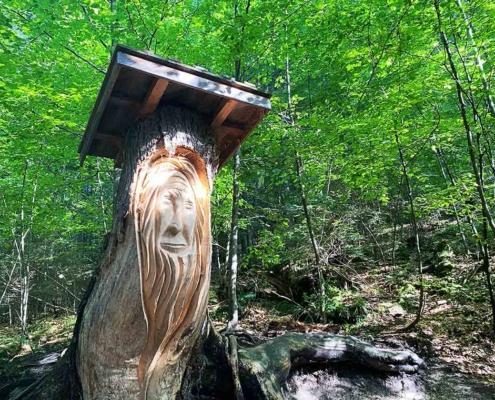 Bergwaldpfad Füssen Waldgeist