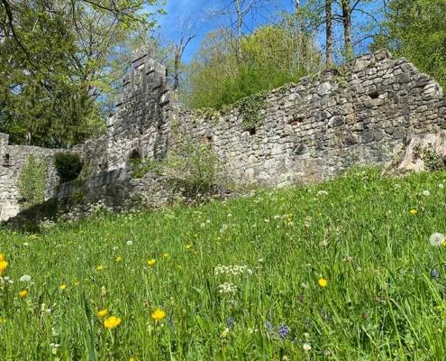 Burgruinen Hohes Schloss Füssen