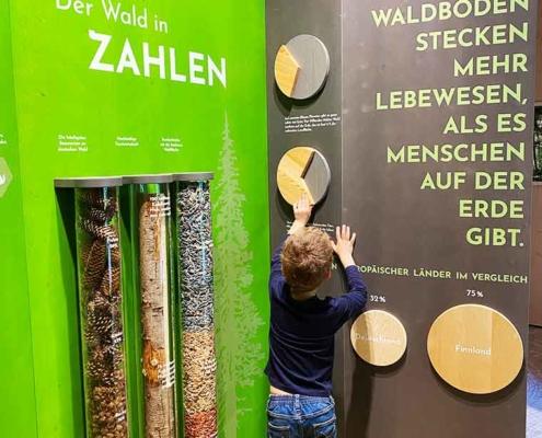 Füssen Walderlebniszentrum Ziegelwies