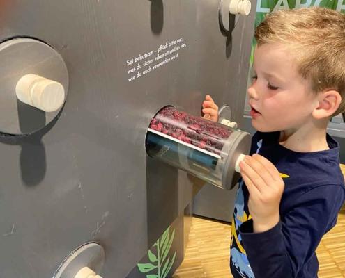 Walderlebniszentrum Füssen Ausstellung