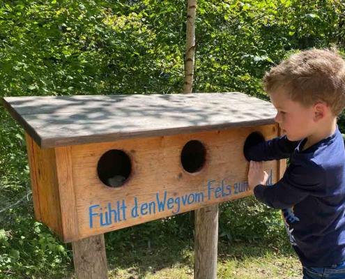 Walderlebniszentrum Füssen Auwahld Lehrpfad