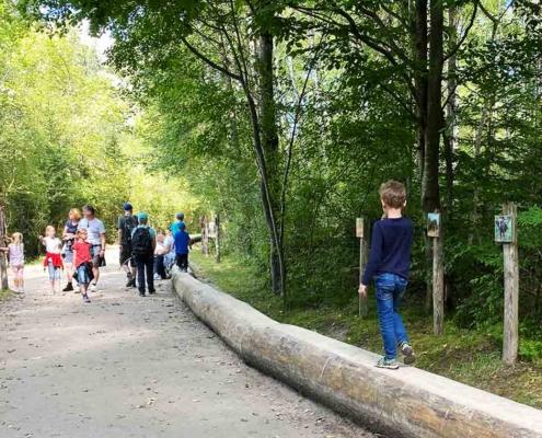 Walderlebniszentrum Füssen Erlebnispfad Auwald