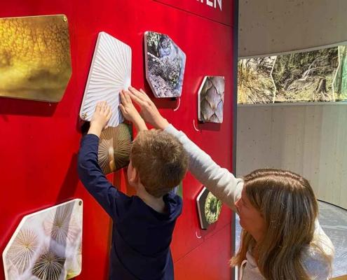 Walderlebniszentrum Füssen Rätsel