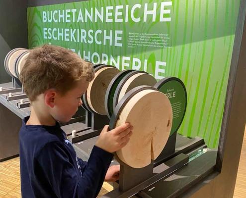 Walderlebniszentrum Füssen interaktiv