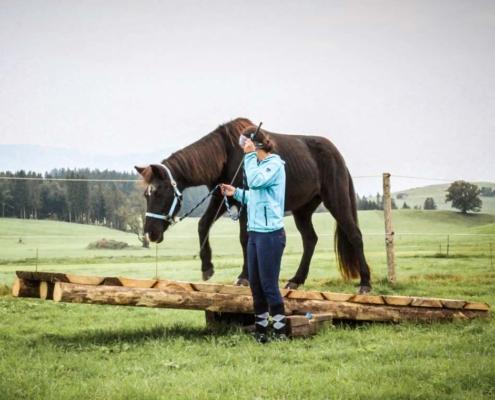 Pferdeflüsterer Allgäu